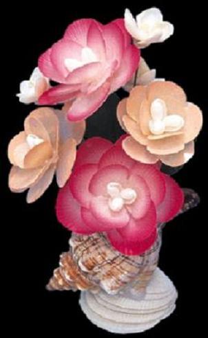 Capiz Flower Arrangement/ Fox Shell A1-33