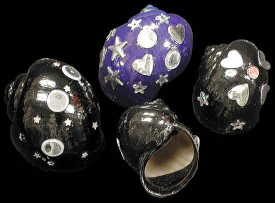 Jewel Shells for Hermit Crabs   10/24/13
