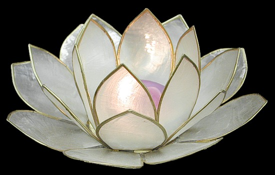 Natural Lotus Candle Holder