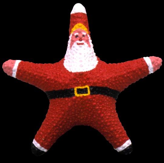 Starfish Red Santa A1-38  9/27/13