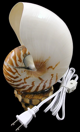 Tiger Nautilus Lamp