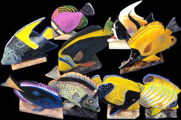 Tropical Fish 9