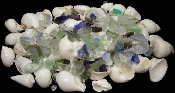 White Shells Lite Mix