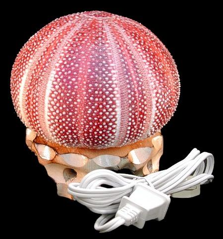 English Sea Urchin Lamp
