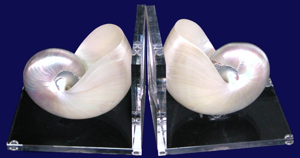 Pearl Acrylic Book Ends