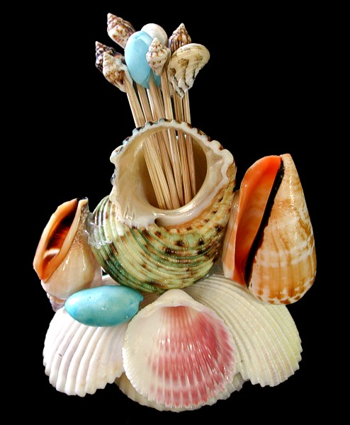 Scallop Shell with Toothpicks