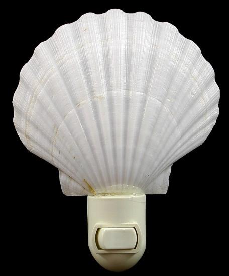 White Scallop Nitelite